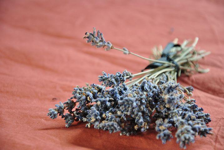 pb lavender