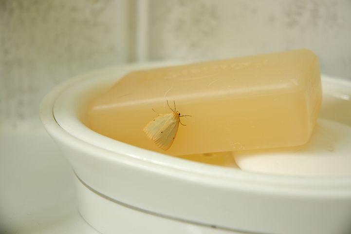 soap base clear & transparent