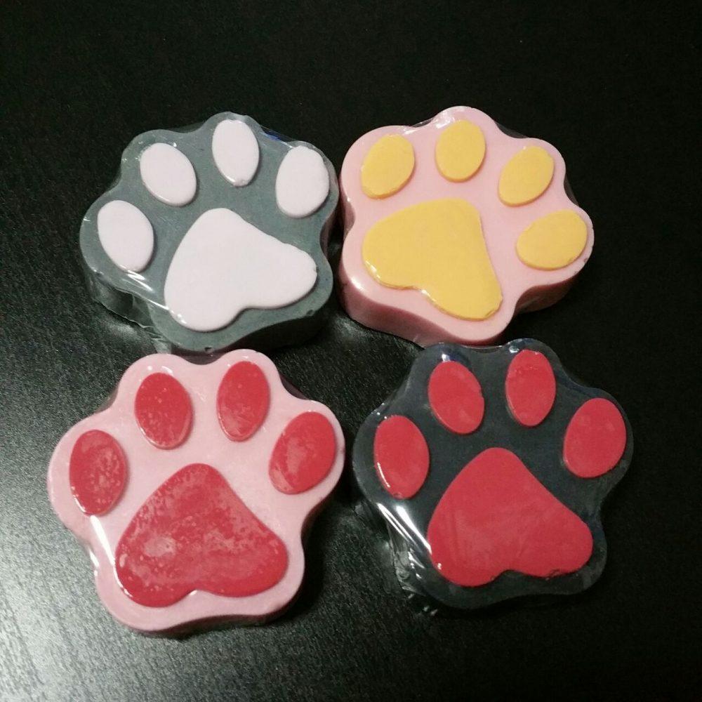 soap paw wonders workshop